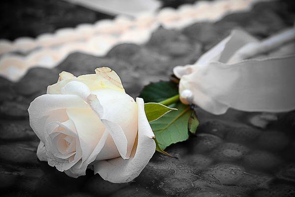Rose auf Erdbeertorte
