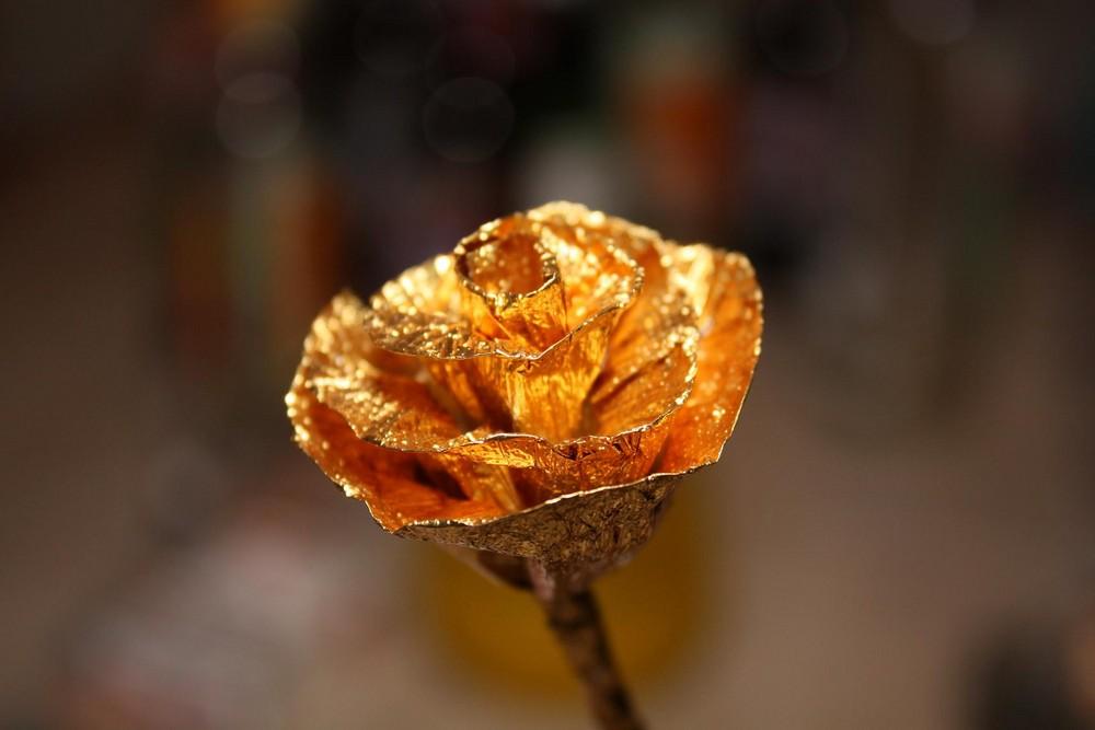 Rose aus Rothaus_Alu