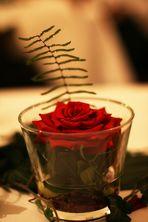Rose bei Hochzeit