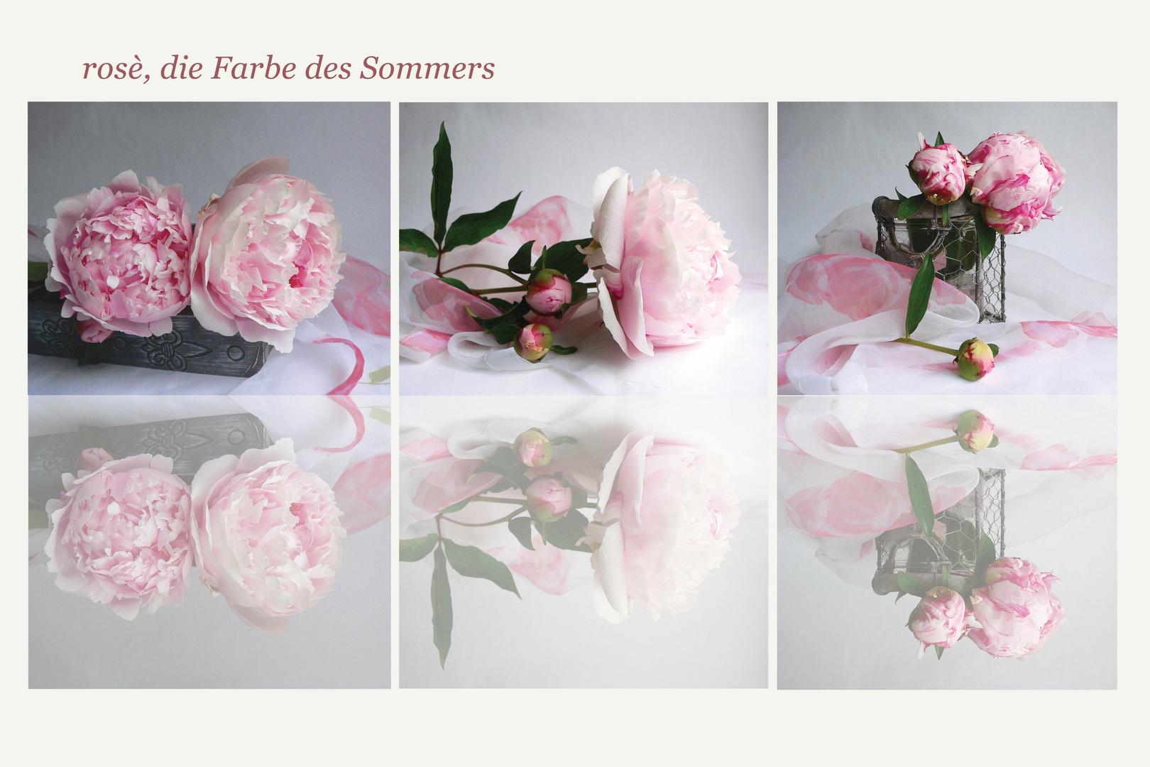 rosé, die Farbe des Sommers