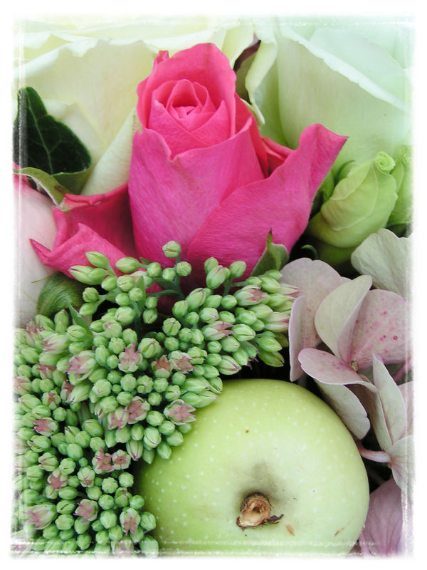 Rose et pomme ...