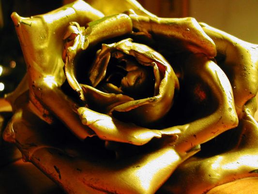Rose mal in Gold