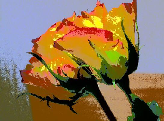 Rose mit Gemäldefilter umgesetzt