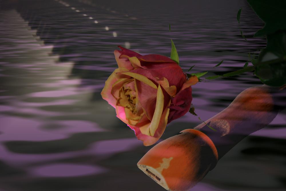 Rose mit Instrumente