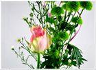 Rose und Grün