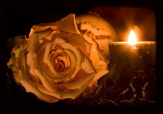 rose und kerze foto bild fotokunst licht und feuer licht aus feuer bilder auf fotocommunity. Black Bedroom Furniture Sets. Home Design Ideas