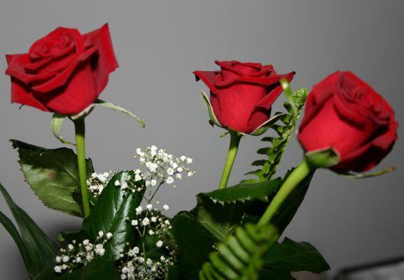 rosen 1