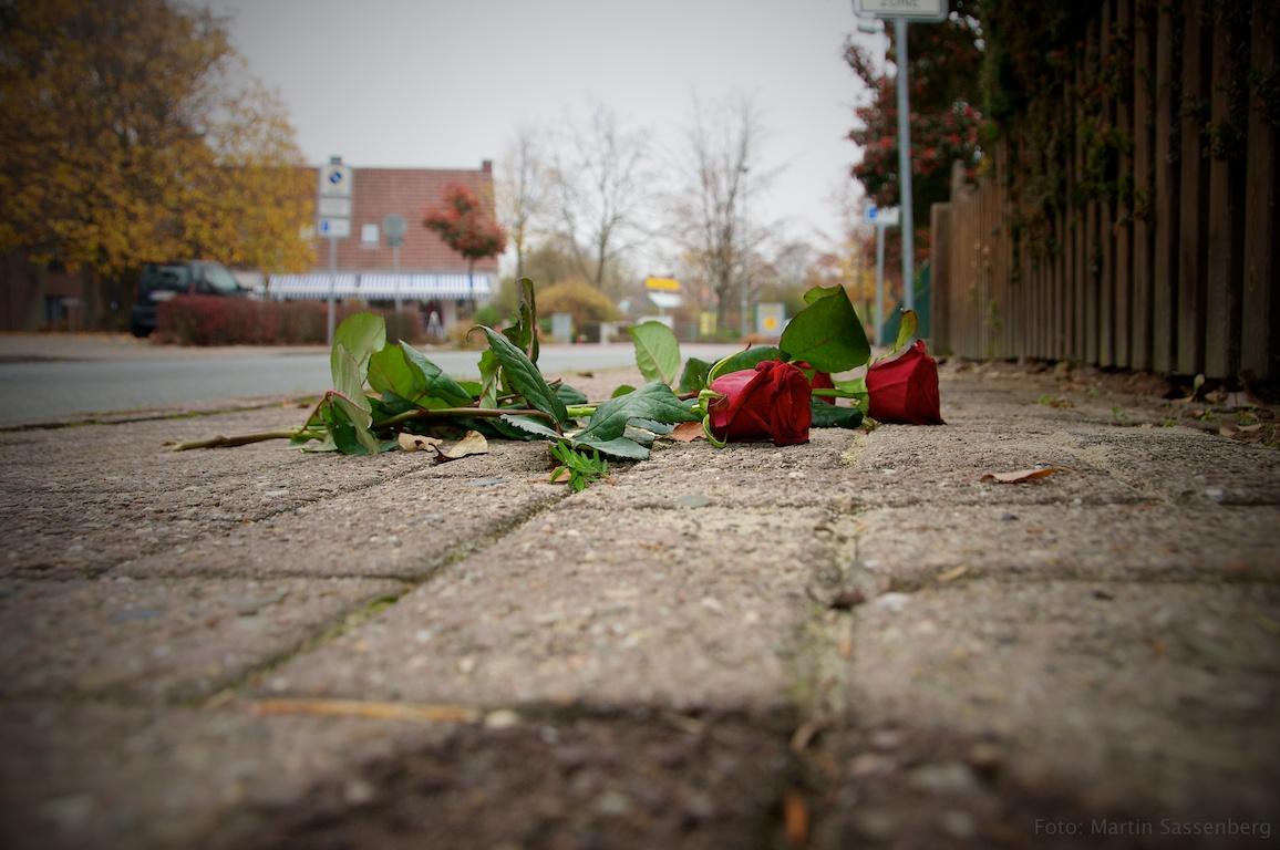 Rosen an einem Stolperstein