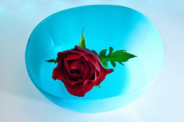 rosen-findling