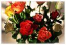 Rosen für Dich... by Monue