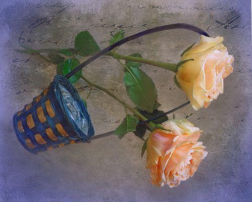 Rosen  mit  Korb