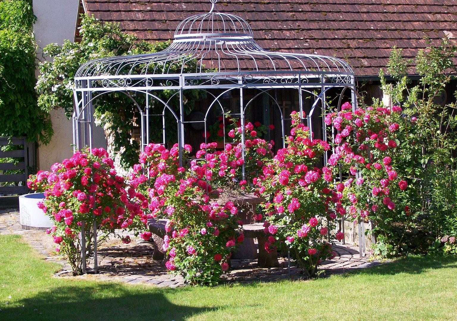Rosen - Pavillon