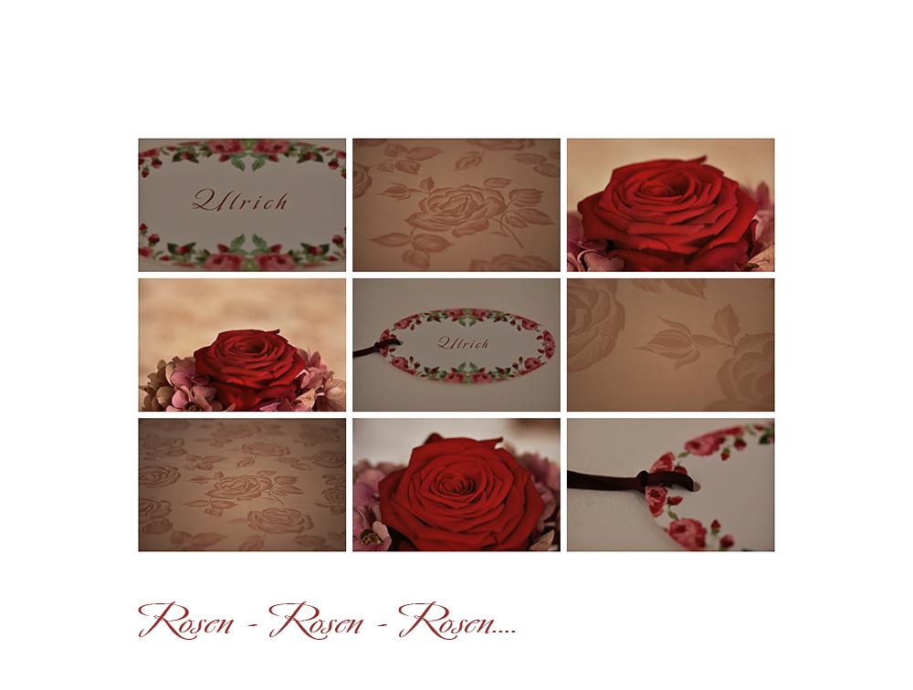 Rosen - Rosen - Rosen