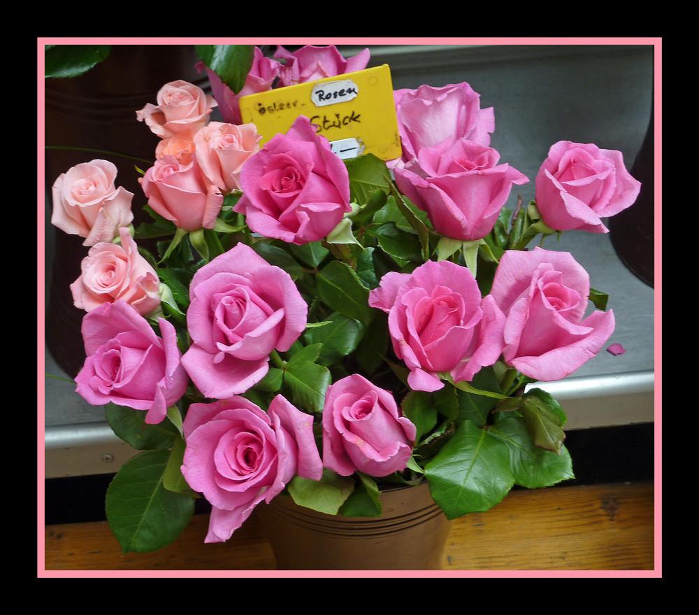 Rosen vom blumen-standl am schwedenplatz in wien - nun