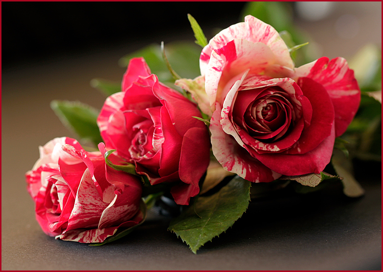 Rosen zum Wochenende