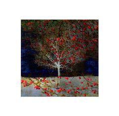 - rosenbaum I -