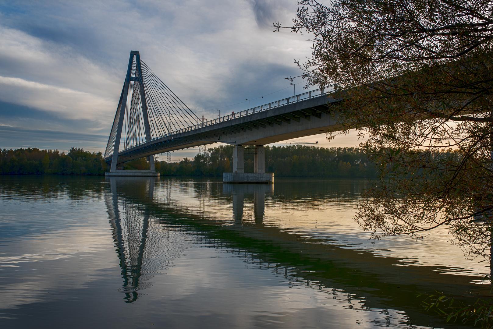 Rosenbrücke Tulln