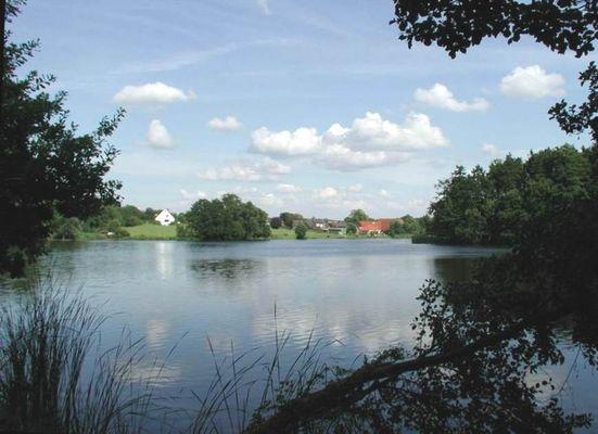 Rosenfelder See
