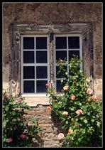 Rosenfenster