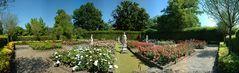 Rosengarten in Farbe
