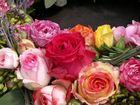 Rosengestaltung