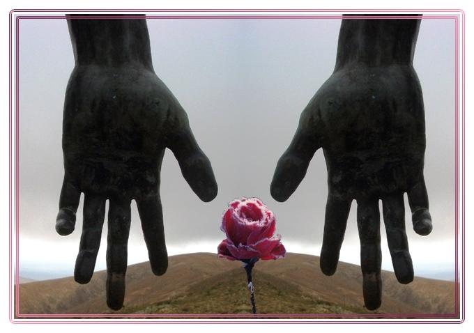 Rosenhände