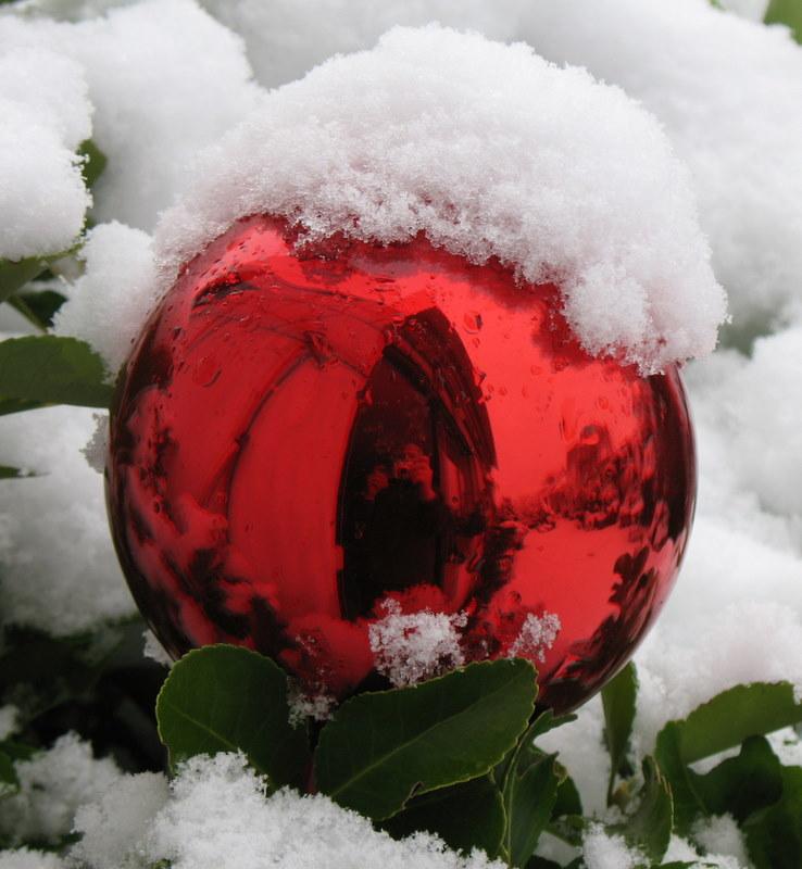 Rosenkugel mit (Schnee)hut