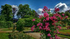 Rosenpark Mechelen