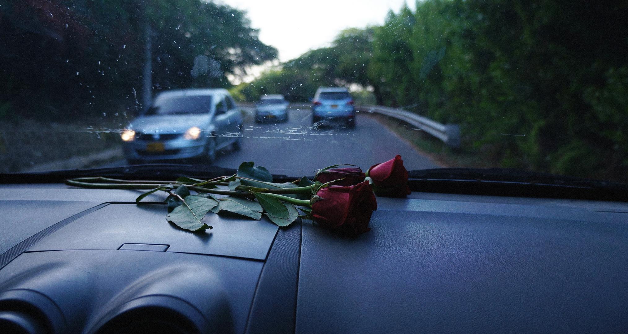 roses for the scene