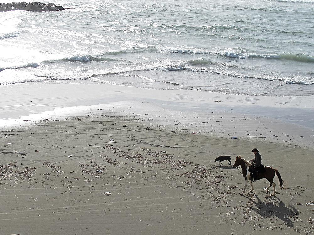 Roß und Reiter, ... / Cavallo e cavalliere, ... (2)