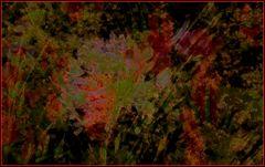 Rosso e verde 2...elaborazione
