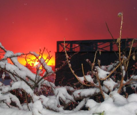 Rosso neve