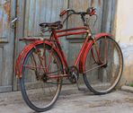 Rost Rotes Velo