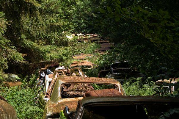 Rost-Stau auf dem Autofriedhof