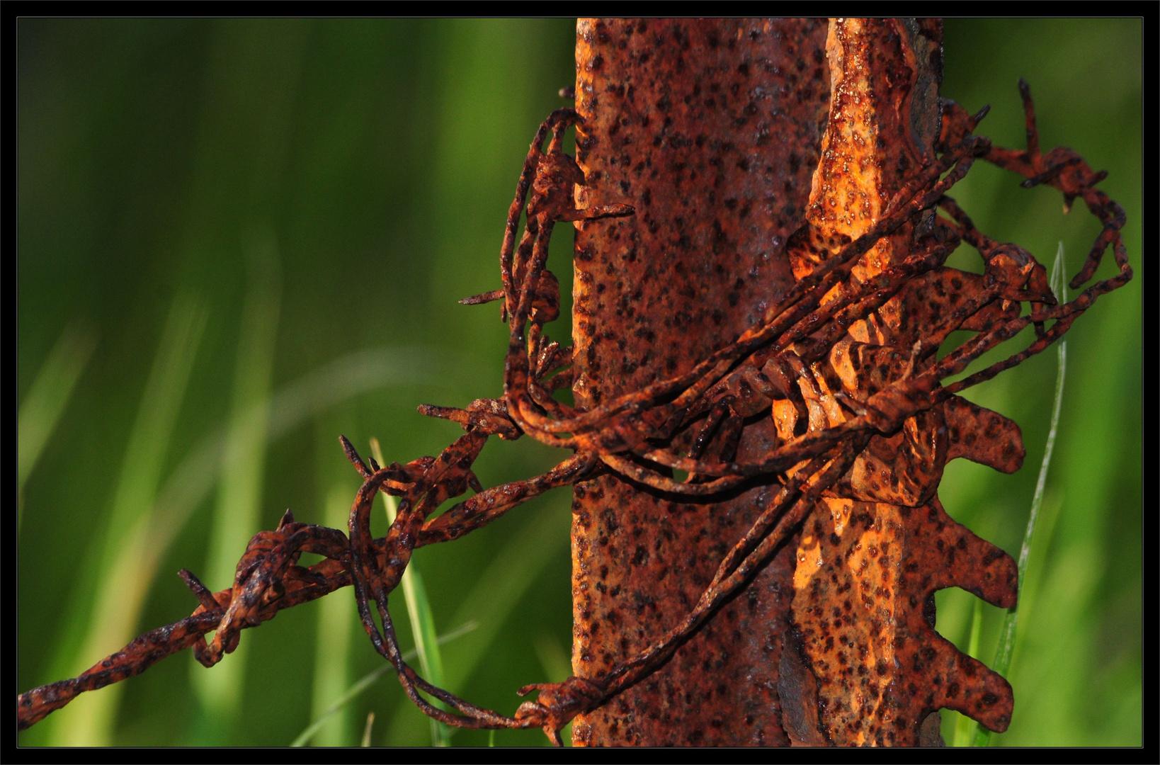 Rost und Natur