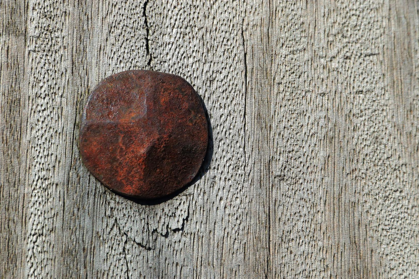 Rostiger Nagel in Bourtange am Wall