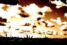 rostocker skyline