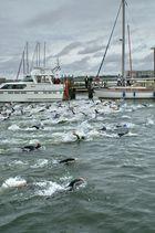 Rostocker Triathlon Start