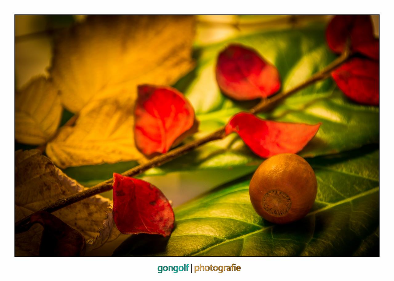 rot - gelb - grün