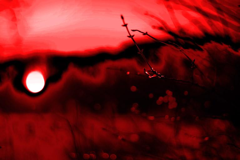 Rot gesehen