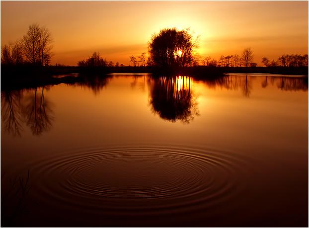Rot-Goldenes Moor........oder