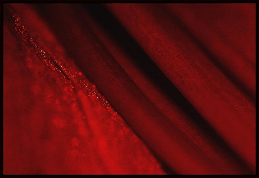 rot und diagonal