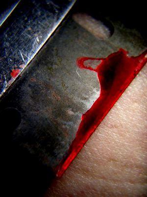Rot wie Blut...