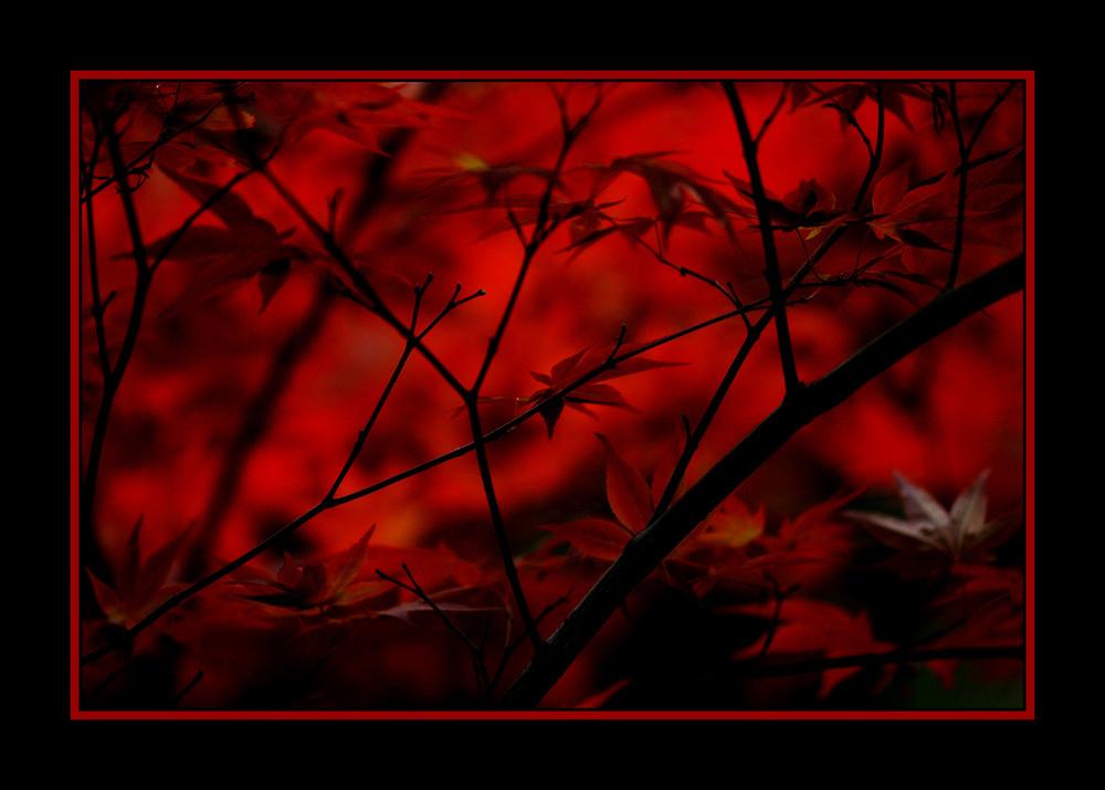 Rote Hölle