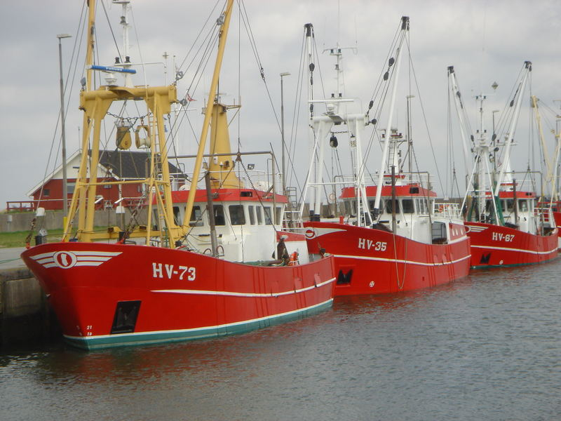 Rote Kutter Römö Hafen