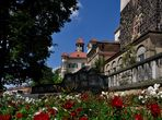 Rote Rosen am Schloss Waldenburg