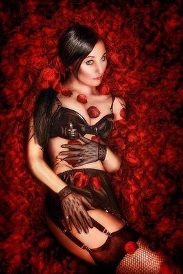 +++ rote rosen +++