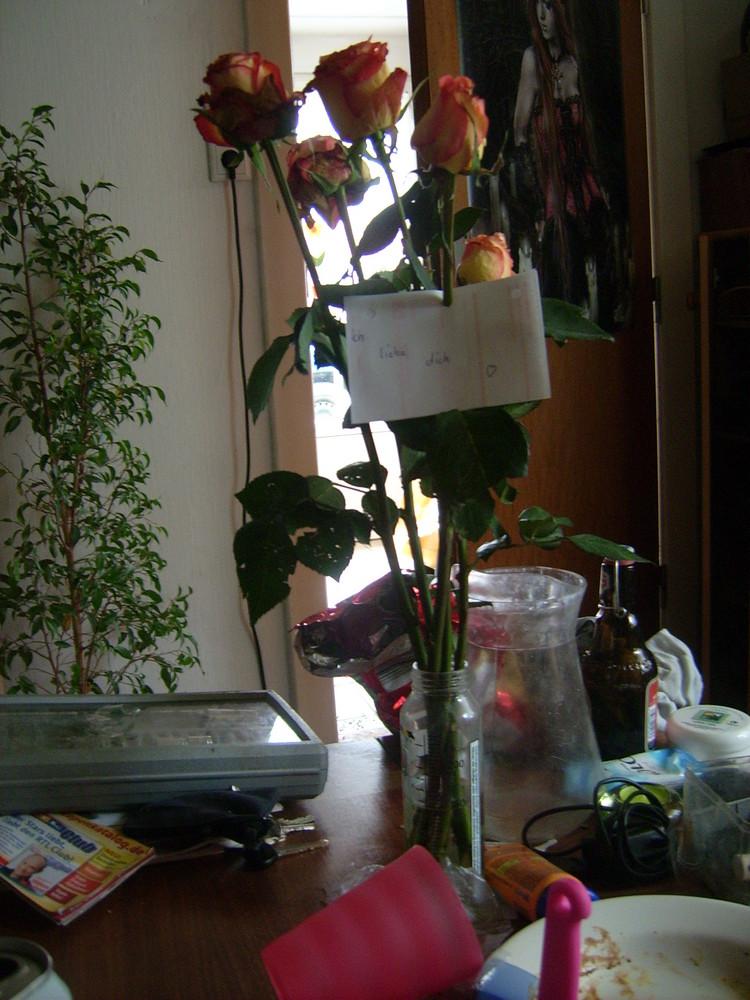 Rote Rosen zum Morgen :)