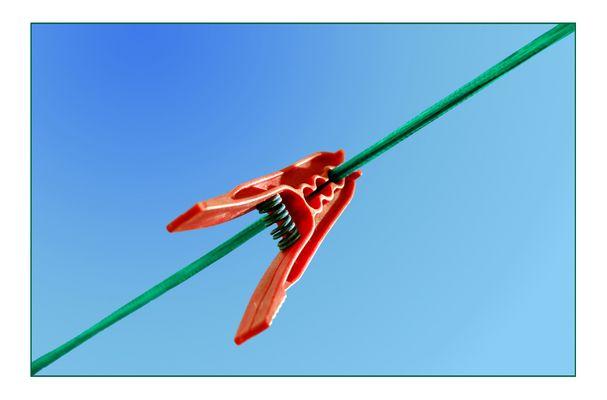 Roter fliegender Fisch beisst grüne Schlange