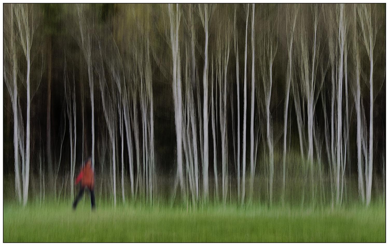 Roter Mann am grünen Wald